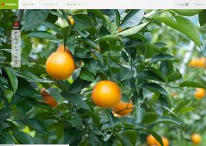 サンマルシェ・ストアのイメージ画像